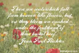 jean paul richter quote there are souls which fall from heaven
