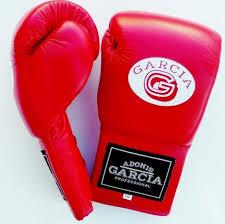 Adonis Garcia Other | 8oz Boxing Gloves | Poshmark