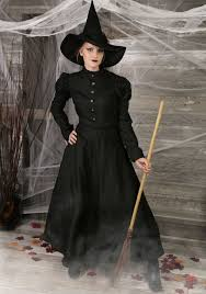 women s plus size witch costume