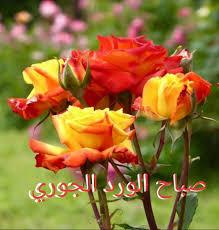حارة شامية صباحكم ورد جوري وردة فيسبوك