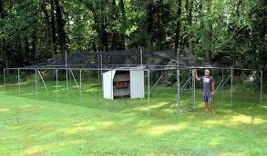 Amazon Com Jones Sports Chicken Pen Garden Fence 6 Tall X25 X50 X75 X100 X150 Poultry Net Backyard Run 24 X 96 Pet Supplies