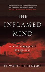 the inflamed mind a radical new approach to depression by edward