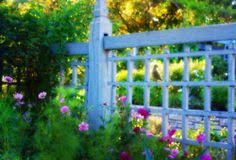 10 Blue Fence Ideas Blue Fence Fence Outdoor Gardens