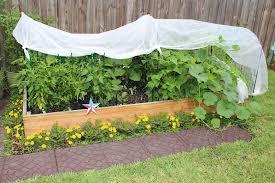 shade cloths in the garden