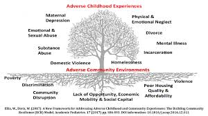adverse childhood experiences resilience and trauma informed