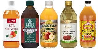 best apple cider vinegar brands for