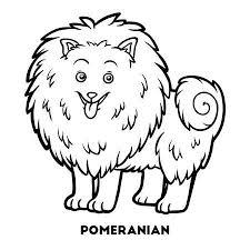 Mewarn08 Kleurplaat Pommeraan Hondje