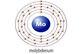 molybdenum neuroneeds