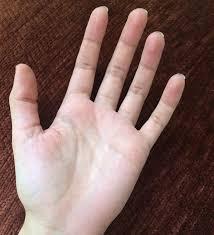يد حلوه