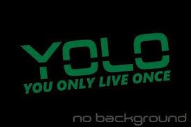 Oracal Yolo Sticker Vinyl Decal You Only Live Once Y O L O Meme Drake Lol Car Window