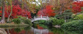 enjoy fall near denton