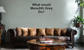 What Would Meredith Grey Do Anatomy Doctors Vinyl Wall Mural Decal Home Decor Sticker