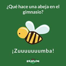 Hasta las abejas hacen ejercicio... - TV Azteca México | Facebook