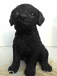 labrador puppy dog dogs black art