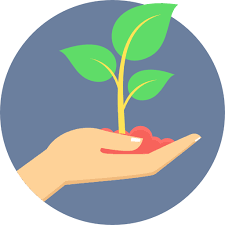 Plant Icon Png #322704 - Free Icons Library