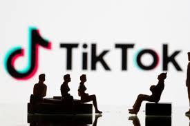 Oracle wins bid to buy US TikTok assets ...