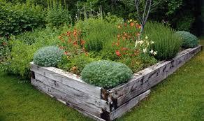 an alpine garden