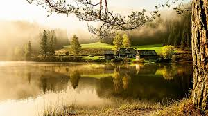 lake morning quiet beautiful scenery