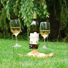 picnic stix wine bottle glasses