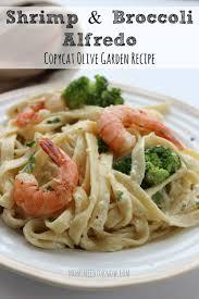 Shrimp and Broccoli Alfredo