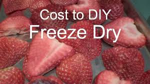 freeze dried strawberries and costs