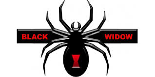 Black Widow Edition Decal Sticker 03
