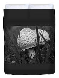 Mushrooms Duvet Cover for Sale by Ashton Roberts - Full