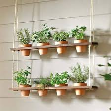 how to make an indoor herb garden the