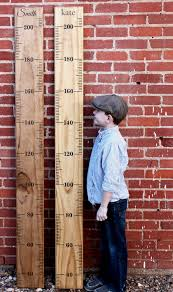Metric Diy Growth Chart Ruler Vinyl Decal Kit Alternating Style Growth Chart Ruler Growth Chart Wooden Growth Chart