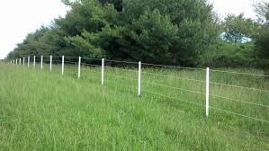 Electric Fence And Wire Fence W Bar Y Fence Company
