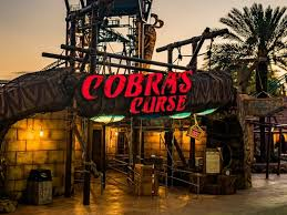 cobra s curse