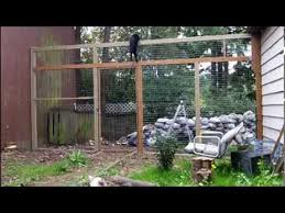 How To Keep Your Cats From Climbing A Fence They Can T Climb This Cat Proof Fence Youtube