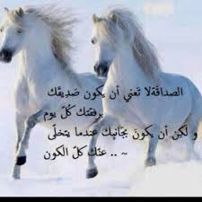 صور خيل مكتوب عليها حكم خيول حكم عن الخيل والصفات الحسنة رسائل حب