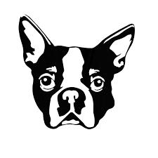 10 2 10cm Boston Terrier Dog Car Stickers Personality Animal Decals Car Styling Decoration Black Silver S1 0273 Sticker Decor Sticker Abssticker Nail Aliexpress