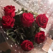 ورود حمراء اجمل الورود الرومانسية