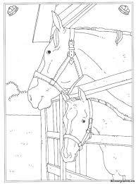 Op De Manege Kleurplaat Kleurplaten Paarden Boek Bladzijden