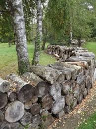 80 Best Cheap Fence Ideas To Embellish Your Garden Fence Cheap Fence Fence Design
