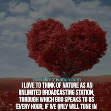 best nature quotes about beautiful earth overallmotivation