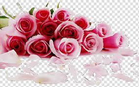 valentines day heart love romance