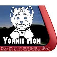 Amazon Com Peeking Terrier Sticker Decal Yorkie Morkie Norfolk Skye Silky Stick On Car Truck Suv Van Mirror Wall Stick Above Lightswitch Pink Kitchen Dining