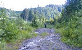 Mountain Biker Killed and Friend Injured by Cougar in Extremely Rare Attack  Near Snoqualmie, WA - SnowBrains