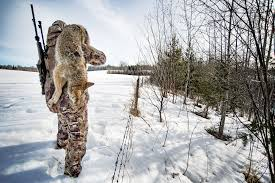 Coyote Nation A Crash Course In Coyote Hunting Outdoor Life