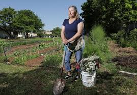 how north texas farmers are using