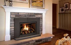 cjs hearth and home fireplace doors