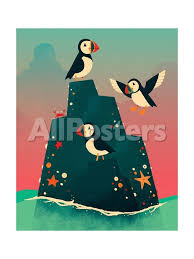 Puffin Rock Posters Michael Buxton Allposters Com