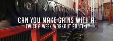 twice a week workout routine old