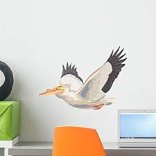 Amazon Com Wallmonkeys Pelican Wall Decal Peel And Stick Graphic 18 In W X 14 In H Wm147470 Home Kitchen