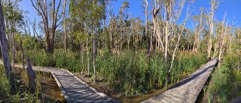 Fay Smith Environmental Park, Maryborough, Queensland, Australia.