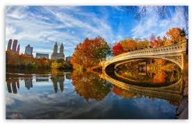 fall foliage in central park new york
