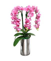 silk flowers orchids gorgeous flowers